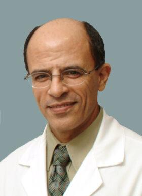 Muhammad Taher Al-Lozi